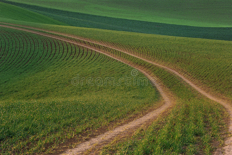 Download Choose Your Path Stock Photos - Image: 1981433