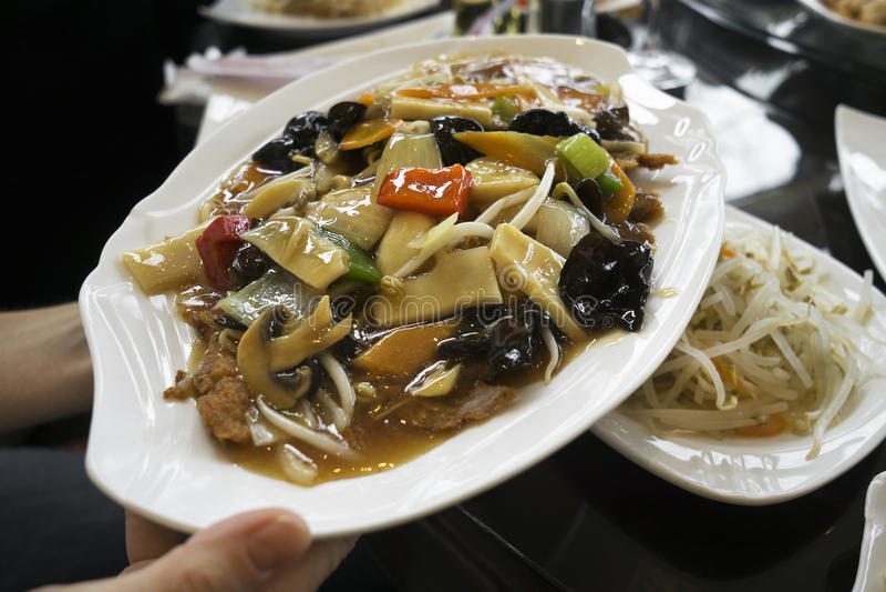 Chop suey de canard photos libres de droits