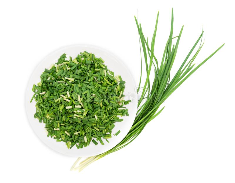 Chop up the garlic chive on white dish,top view,isolated on white background. Chop up the garlic chive on white dish ,top view ,isolated on white background royalty free stock photography