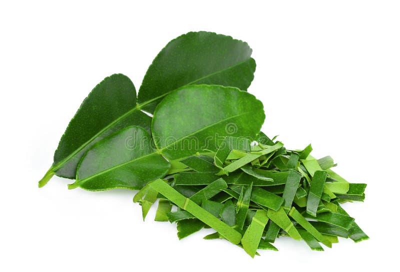 Chopped bergamot leaf with bergamot leaf isolated on white stock image