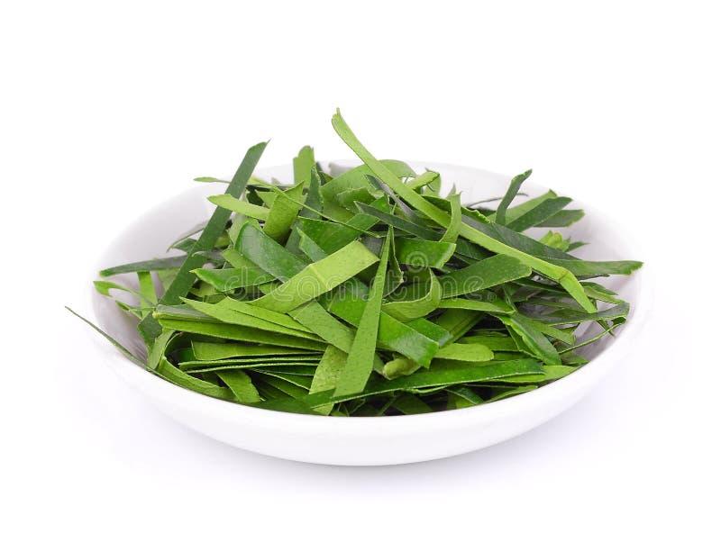 Chopped bergamot leaf in the white dish isolated on white stock images