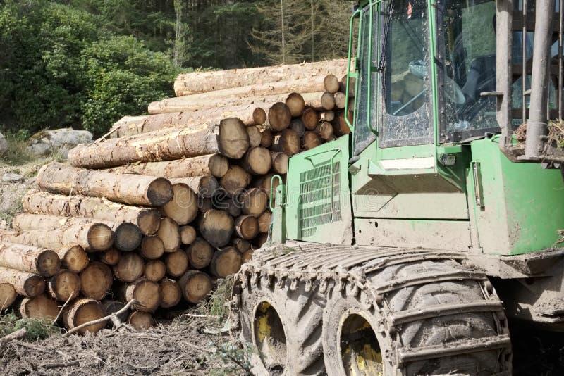 Chopped empilhou os logs de madeira para o escavador do combustível e do trator na floresta foto de stock