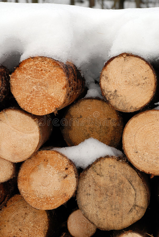 Chopped logs in winter snow. Close up details of pile of chopped logs covered in snow, winter scene royalty free stock photos