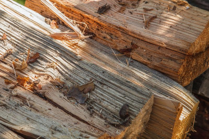 Chopped pine firewood close-up stock images