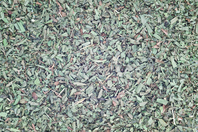 Chopped Tarragon For Use As Background Stock Photography