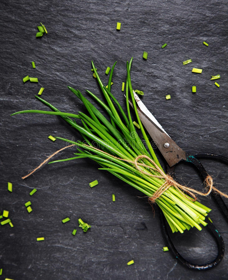 Chopping a bunch of fresh chives stock photos
