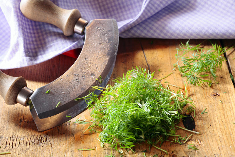 Chopping fresh dill royalty free stock photos