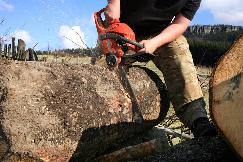 Chopping trees for firewood, country job stock photography
