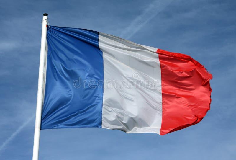 chorągwiany francuz zdjęcia stock