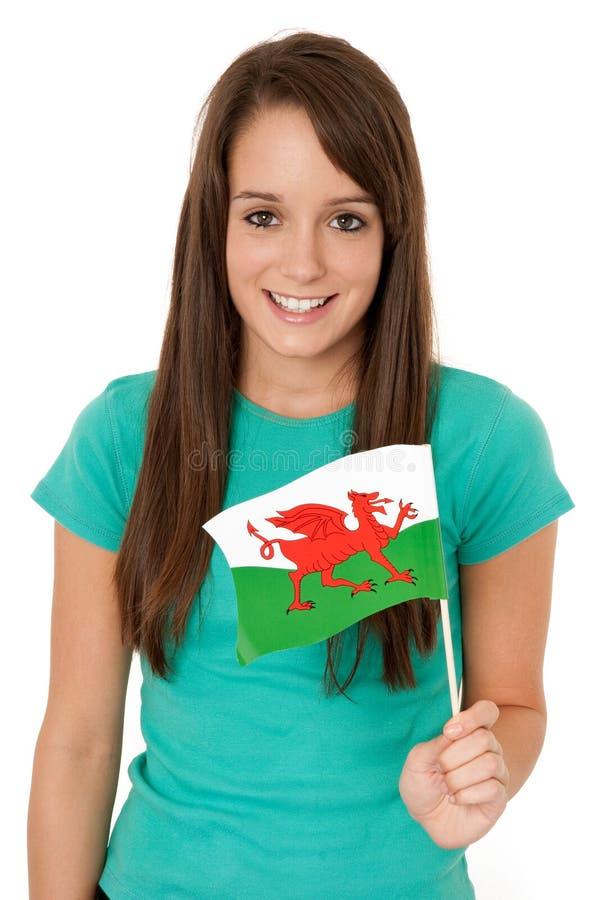 chorągwiany Welsh zdjęcie stock