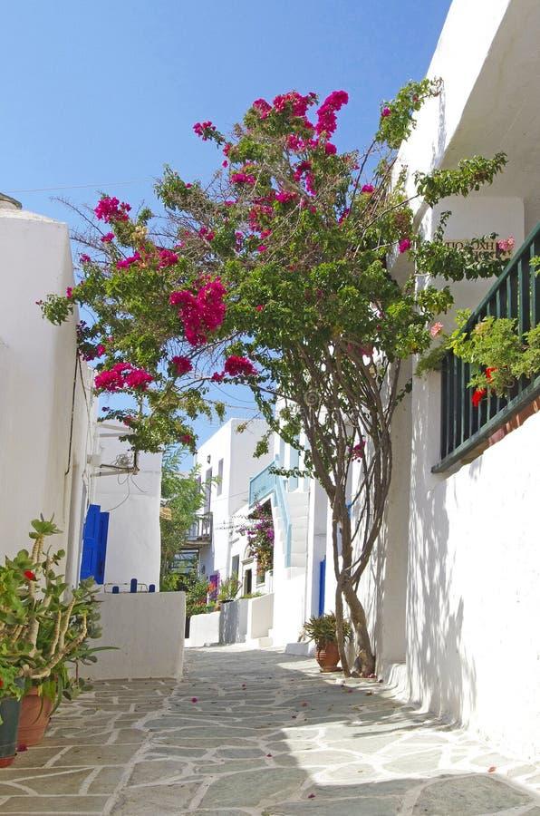 Chora, Folegandros island. Traditional houses, view of the town (chora), Folegandros island, Greece stock image