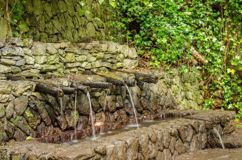 Chorros de Epina - μαγικές πηγές νερού του Λα Gomera στοκ φωτογραφία με δικαίωμα ελεύθερης χρήσης