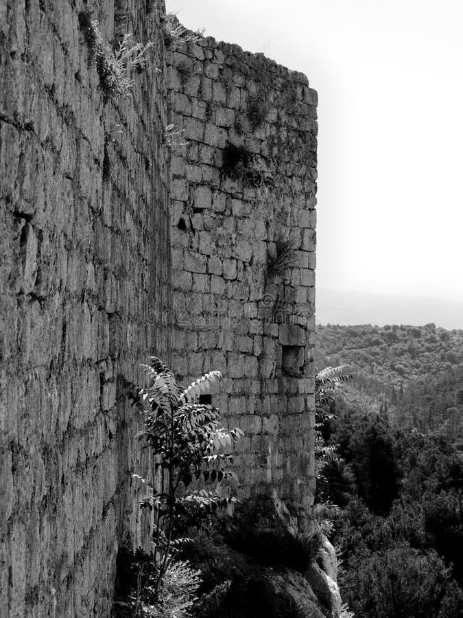 Chorwacja, Zadar, piękno, historia, Novigrad, fan i szczęśliwy, fotografia stock