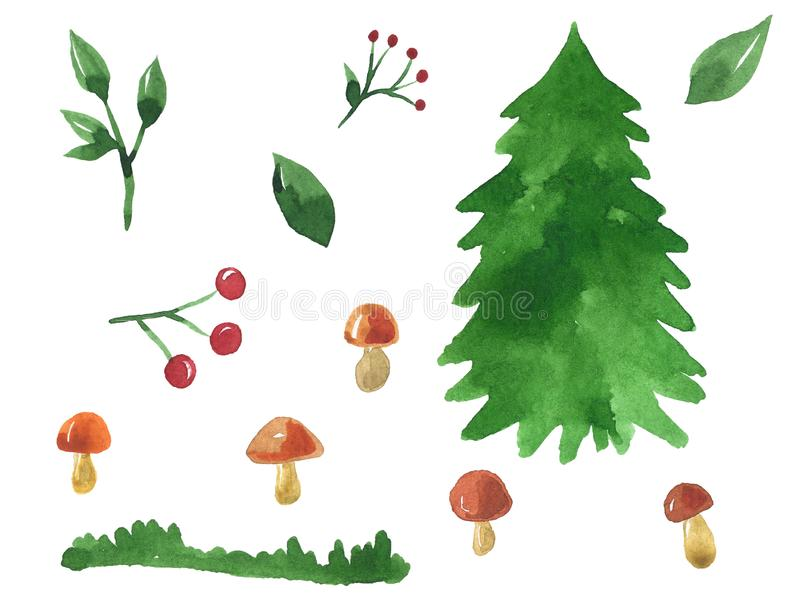 Choses de forêt Ensemble d'?l?ments pour la conception Sur son trente et un, champignons, baies, branches Illustration tir?e par  illustration de vecteur