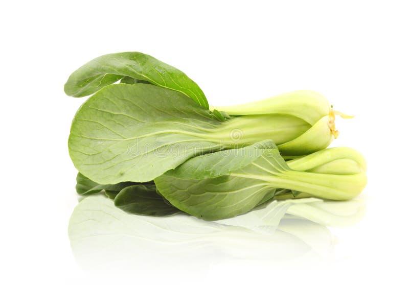 Chou de chine frais vert ou Bok Choy images stock