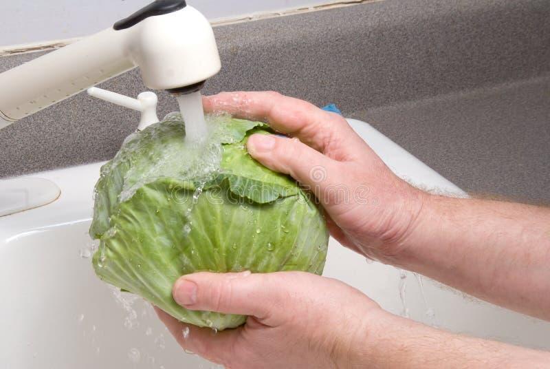 Download Chou de lavage photo stock. Image du germe, ingrédient - 8669868