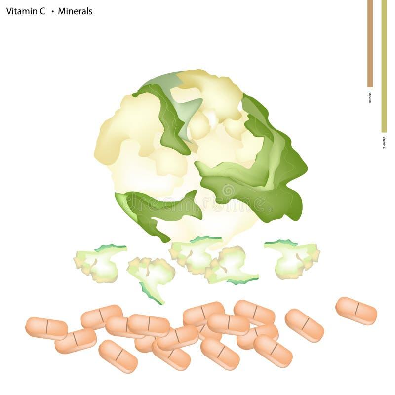 Chou-fleur blanc avec la vitamine C et les minerais illustration stock