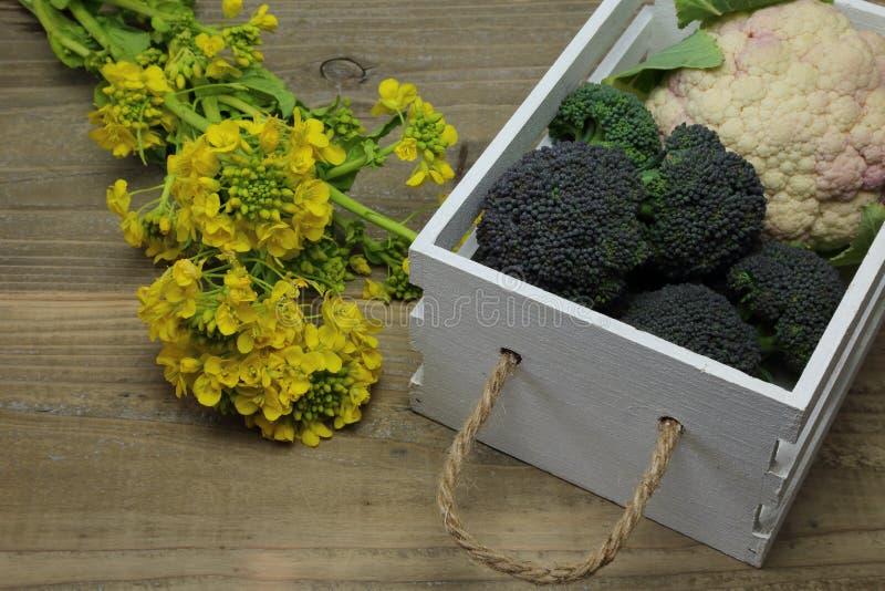 Chou-fleur et brocoli dans un récipient en bois blanc photos libres de droits