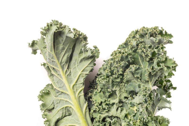 Chou frisé vert sain organique photographie stock