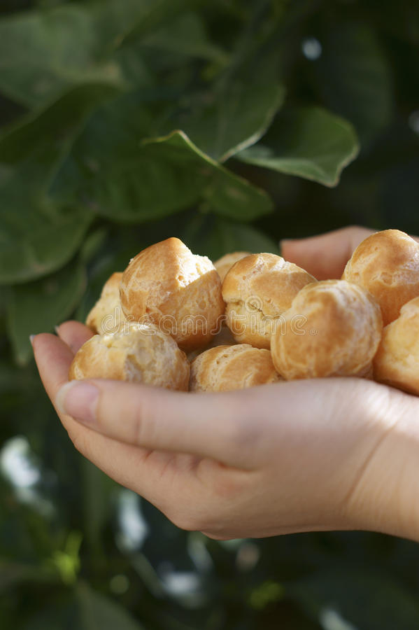 Choux Buns For A Saint-Honor Stock Images