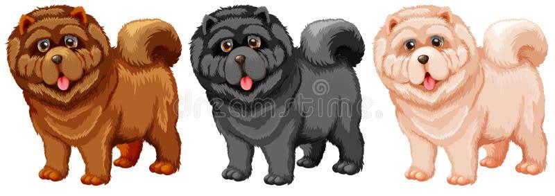Chow Chow vector illustratie