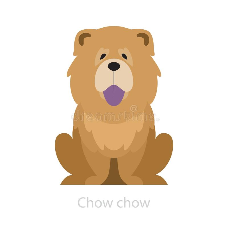 Chow chow dog breed. Animal with a fluffy fur. vector illustration