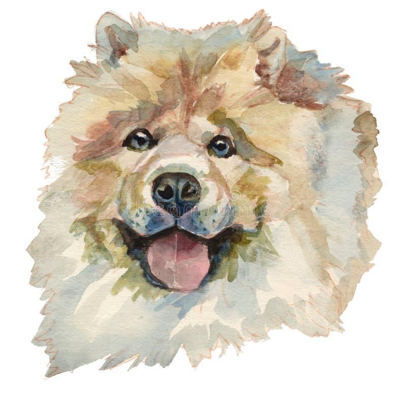 Chow Chow Dog, portret van de waterverf het hand geschilderde hond royalty-vrije illustratie