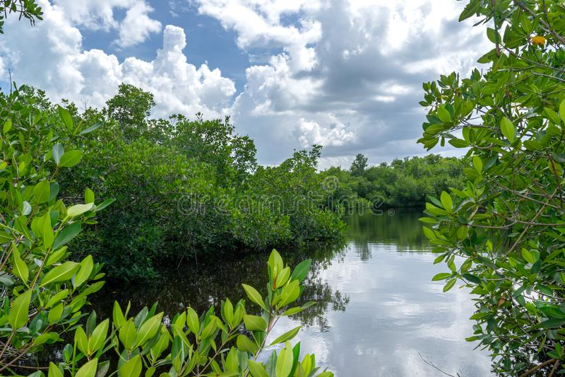 Chowany jezioro w Varahicacos Kuba fotografia stock