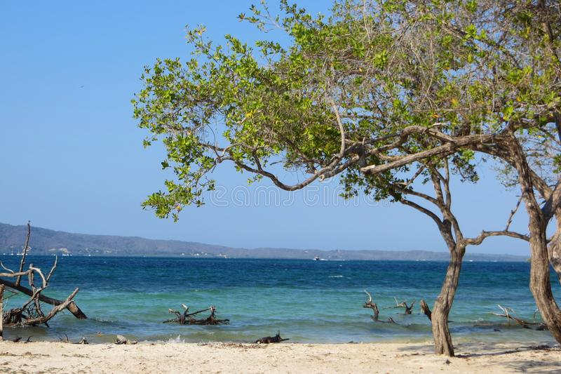 Chowany raj, wenezuelczyk plaża zdjęcie royalty free