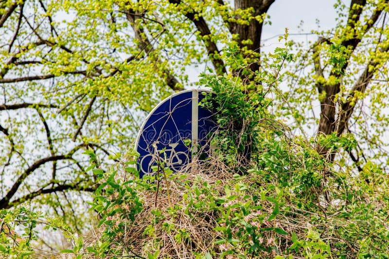 Chowany rower i zwyczajna ścieżka porosłym krzakiem zdjęcia royalty free