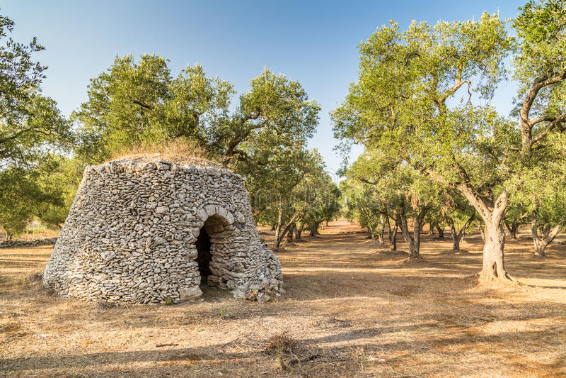 Choza de la piedra seca con la bóveda en la arboleda de olivos foto de archivo