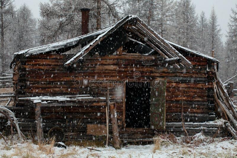 Choza de madera en el bosque debajo del nevadas imágenes de archivo libres de regalías