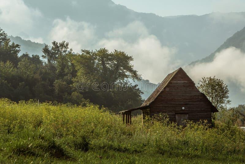 Choza en el bosque de niebla fotos de archivo libres de regalías
