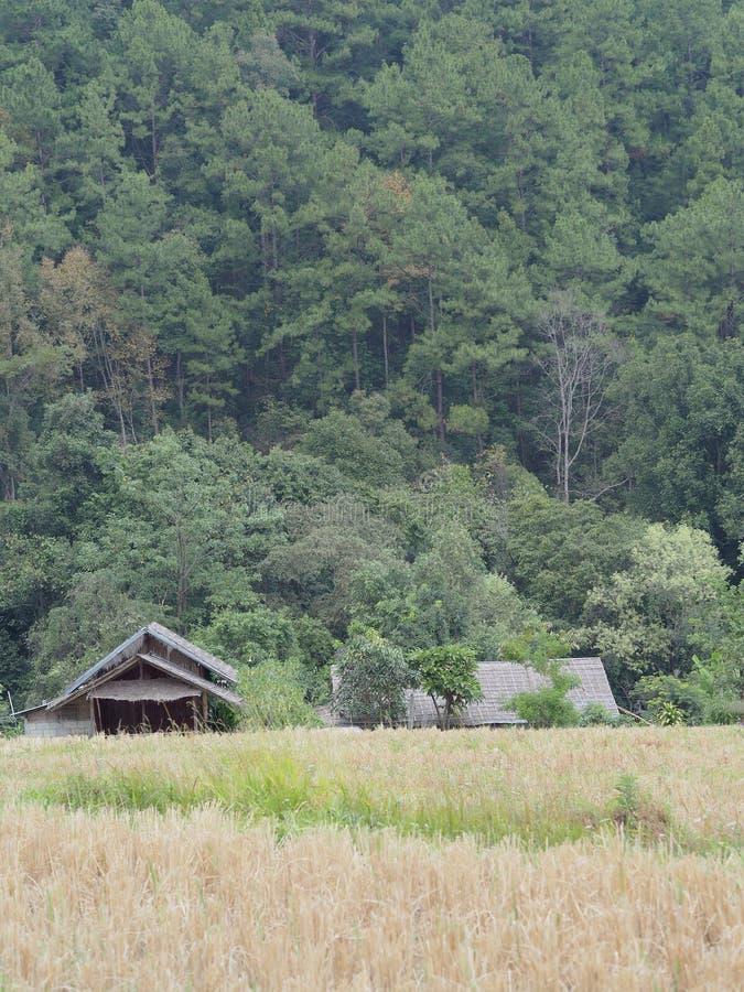 Choza en la granja foto de archivo libre de regalías