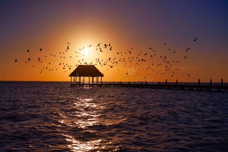 Choza México del embarcadero de la playa de la puesta del sol de la isla de Holbox fotografía de archivo