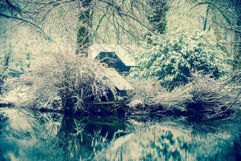 Choza sola en el medio de un bosque congelado fotografía de archivo
