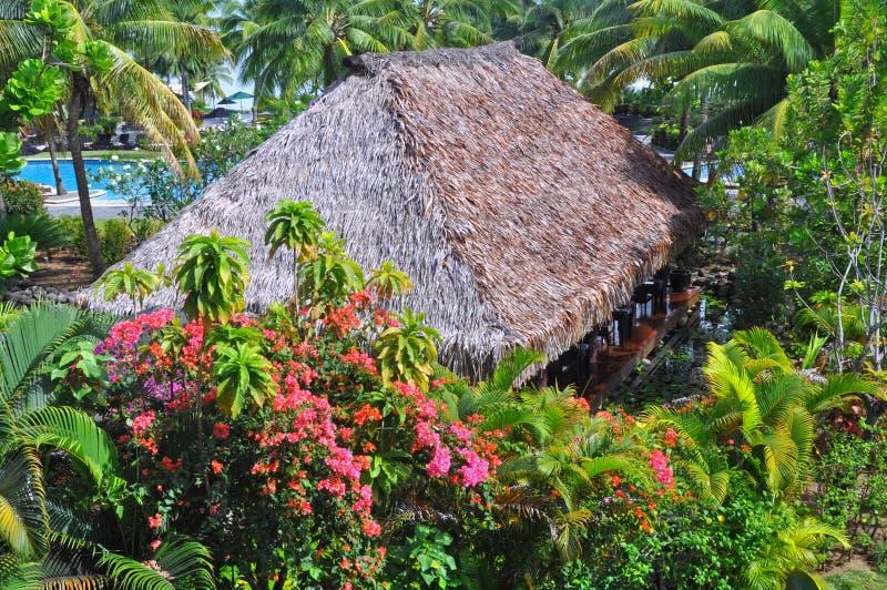 Choza tradicional de la hierba del Fijian en jardines tropicales imagen de archivo