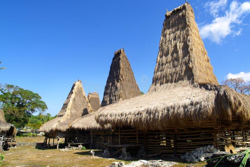 choza tradicional del habitante en la isla del sumba foto de archivo