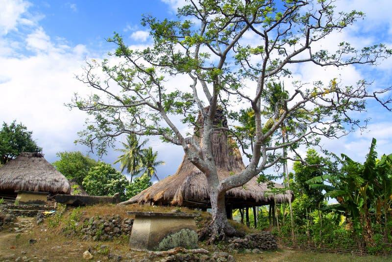 Choza tradicional del habitante en la isla del sumba fotografía de archivo