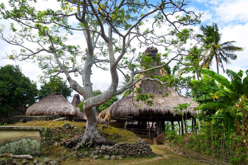 Choza tradicional del habitante en la isla del sumba imagen de archivo
