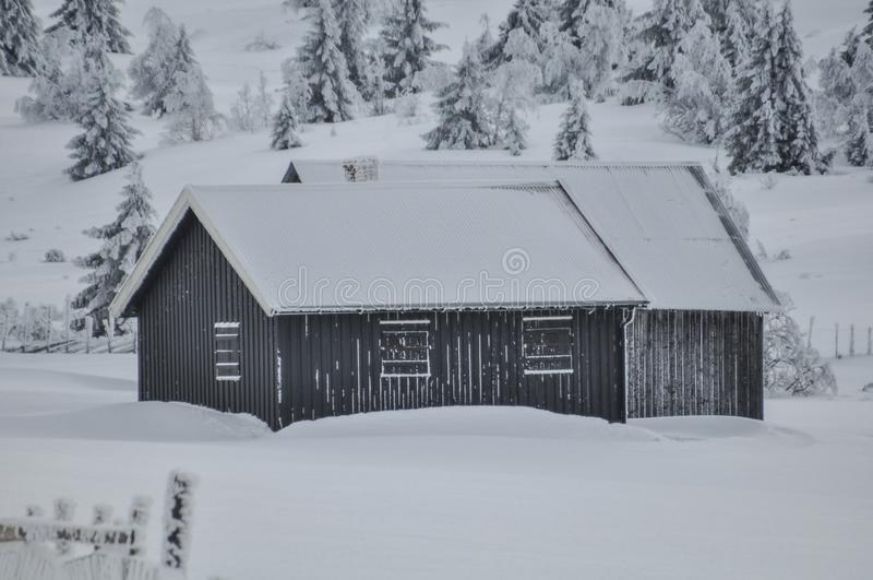Chozas acogedoras ocultadas lejos en nieve profunda y un bosque helado imagen de archivo libre de regalías