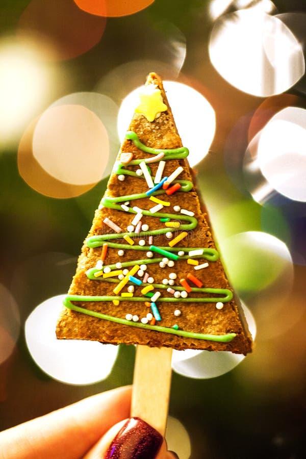 Chrismtas brownie à la main, concept de vacances images libres de droits