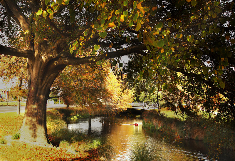 Christchurch in Autumn. River and trees at Christchurch, New Zealand stock images