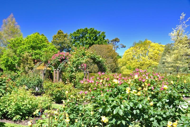 Christchurch botanische tuin royalty-vrije stock foto's
