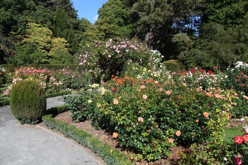 Christchurch, Nieuw Zeeland royalty-vrije stock foto
