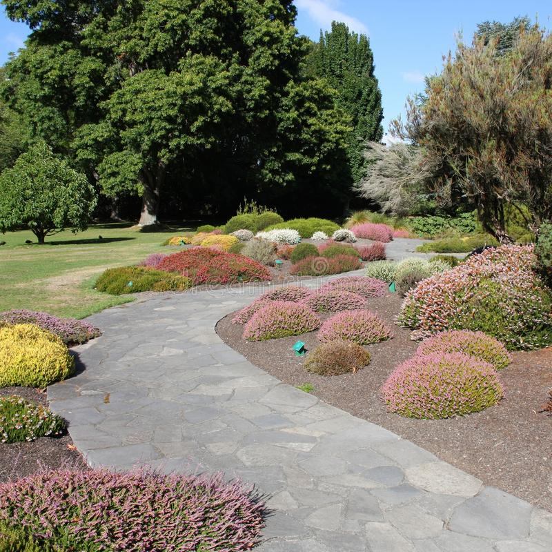 Christchurch ogródy botaniczni zdjęcia royalty free