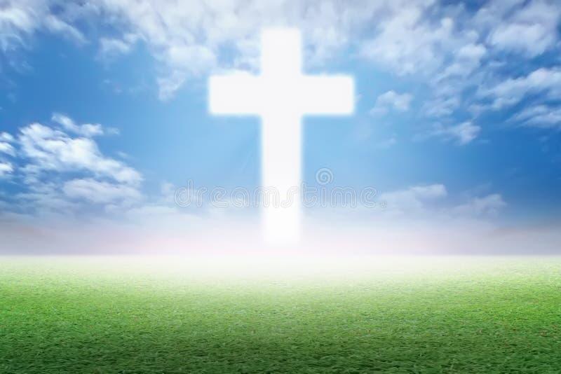 Christian Cross in der grünen Weide lizenzfreie abbildung