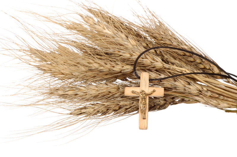 Christian Cross And Wheat. Christian cross on wheat ears - religious concept - isolated on white stock image