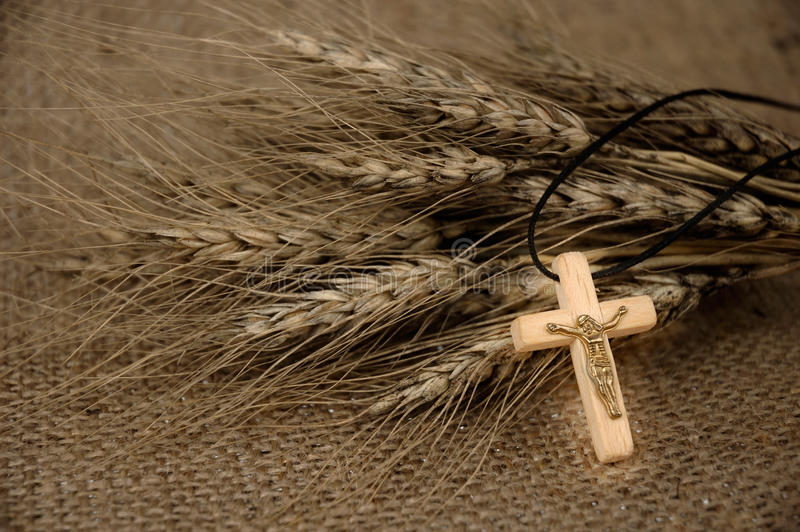 Download Christian Cross And Wheat stock image. Image of religious - 13634589
