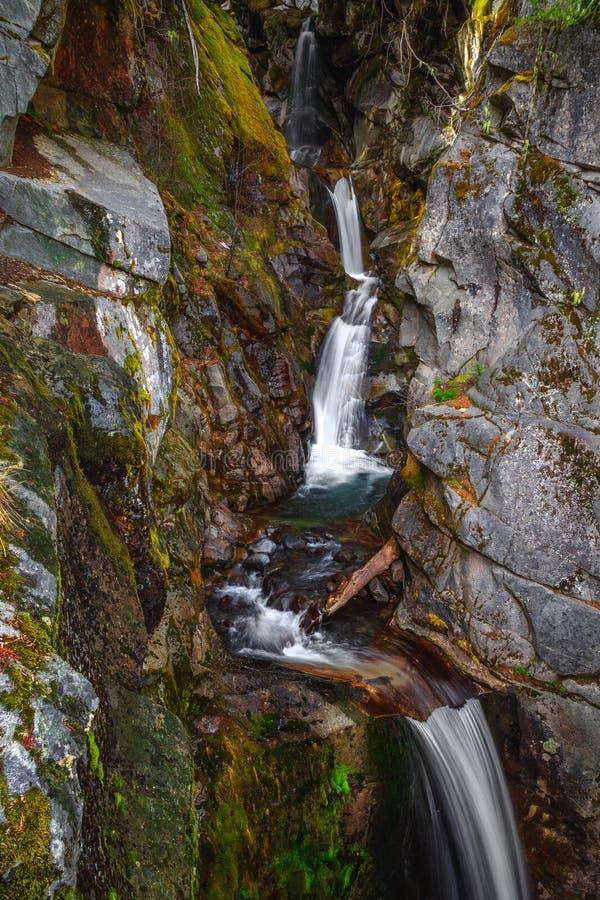Christine Falls sur Van Trump Creek, Mt Rainier National Park photo stock
